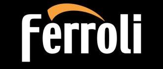 Chaudières à gaz Ferroli: examen, avis, dysfonctionnements
